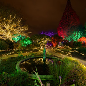 Garden Lights, Holiday Nights by David Kosmos Smith (davidkosmos)) on 500px.com