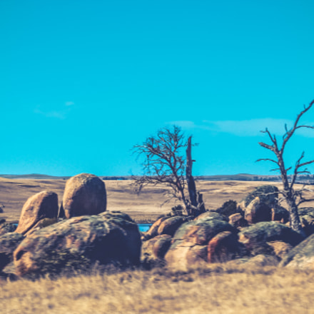 Barren, Canon EOS 600D, Canon EF-S 55-250mm f/4-5.6 IS