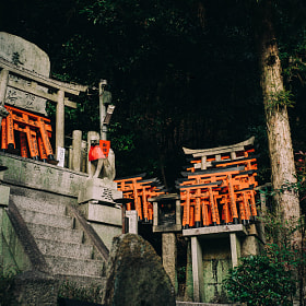 Little shrine in Fushimi Inari, Kyoto, Japan