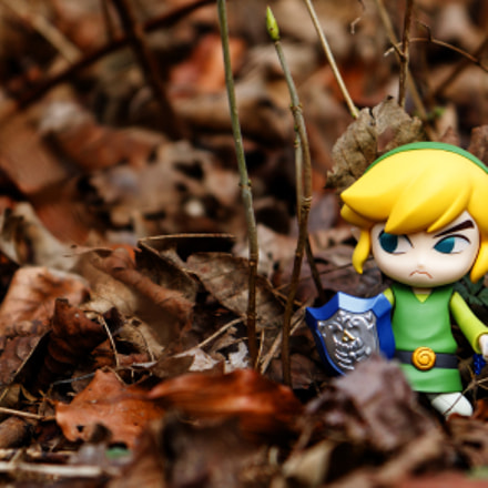 the legend of zelda 1, Canon EOS 760D, Canon EF-S 17-55mm f/2.8 IS USM