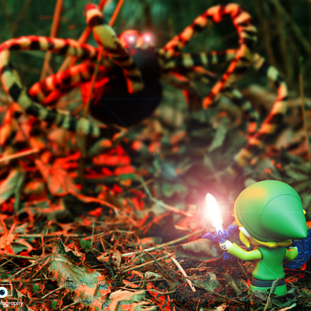 the legend of zelda 4, Canon EOS 760D, Canon EF-S 17-55mm f/2.8 IS USM