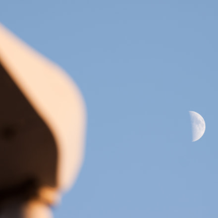 the moon watcher, Canon EOS 500D, Canon EF-S 55-250mm f/4-5.6 IS