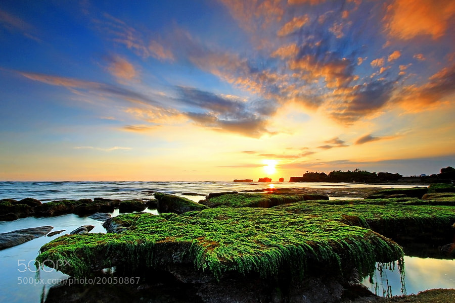 Photograph Green Table by Agoes Antara on 500px