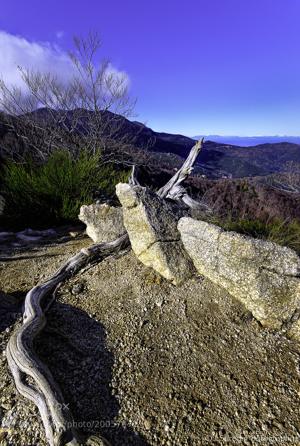 Photograph Heading to Pirenees by Joel Sureda on 500px