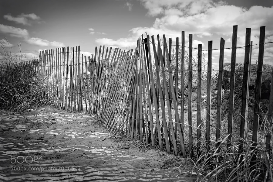 A beach fence in Evanston, Illinois.  You can purchase this photo here:  http://fineartamerica.com/featured/the-beach-fence-scott-norris.html.