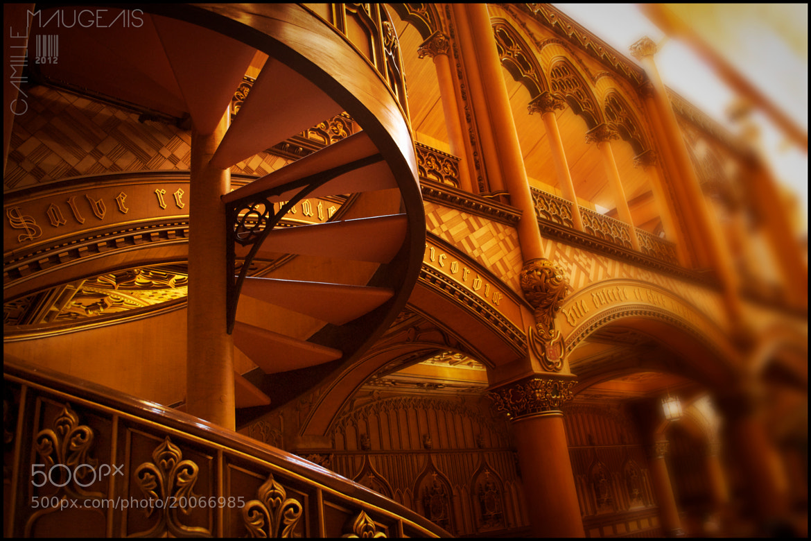Photograph Stairs by Camille Maugeais on 500px