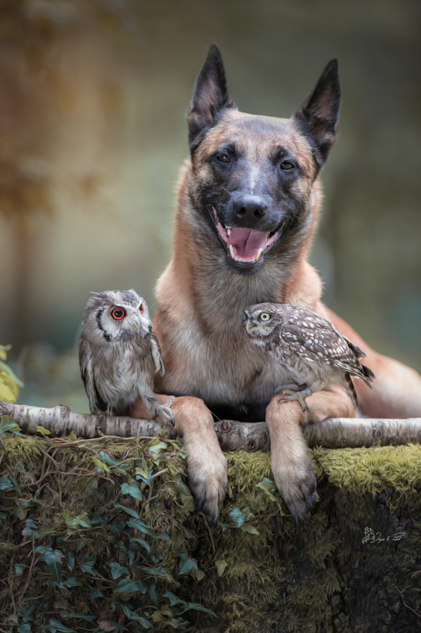 Laughing by Tanja Brandt on 500px.com