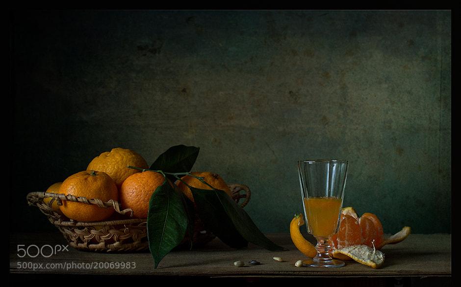 Photograph Mandarin or all of the vitamins! by Viktoria Imanova on 500px