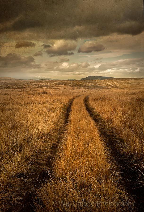 Photograph road in grass by Will Datené on 500px