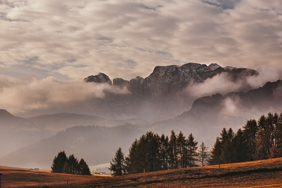 Dolomites - In Layers