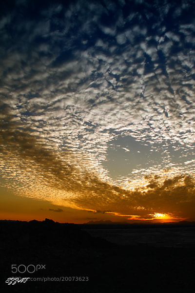Photograph Sunset by ezzat ezzat on 500px