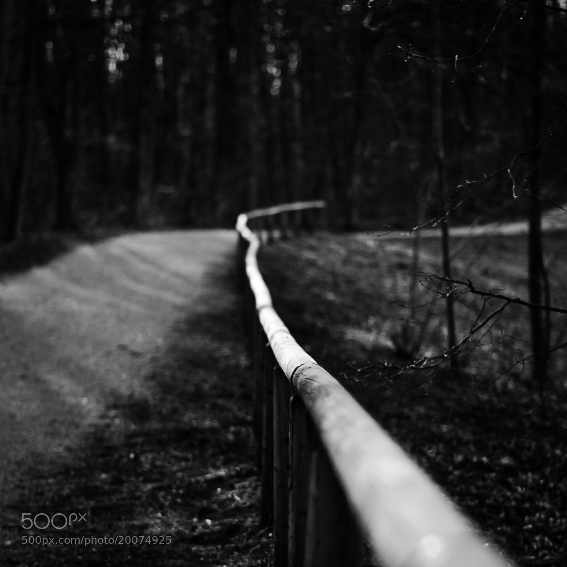Photograph Follow your path by Pascal C. on 500px