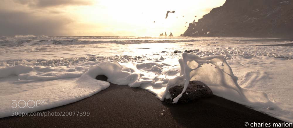Photograph Noir & Blanc en Islande by Charles Marion on 500px