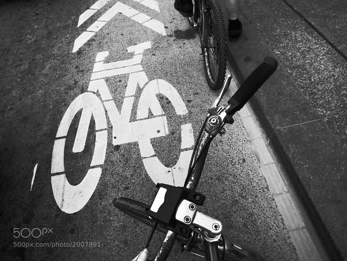 Photograph Bike Sharrows on Bloor St. by Simon Carr on 500px