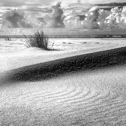 """""""Midday, Topsail Point"""", Nikon D300S"""