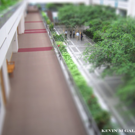 lmu university hall miniature, Canon POWERSHOT SD1200 IS