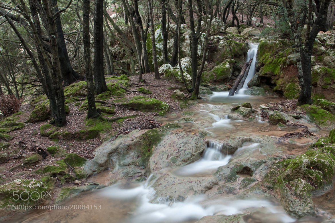 Photograph Coanegra by Joan Marques Faner on 500px