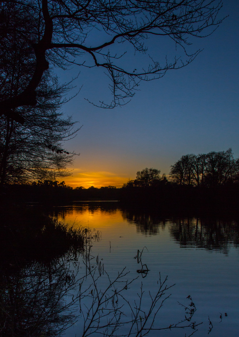 Photograph Virginia Water Sunset... by Mark Horton on 500px