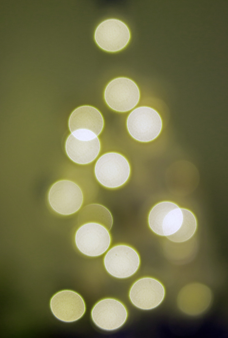 Photograph Christmas Bokeh by Kirsten Cunningham on 500px