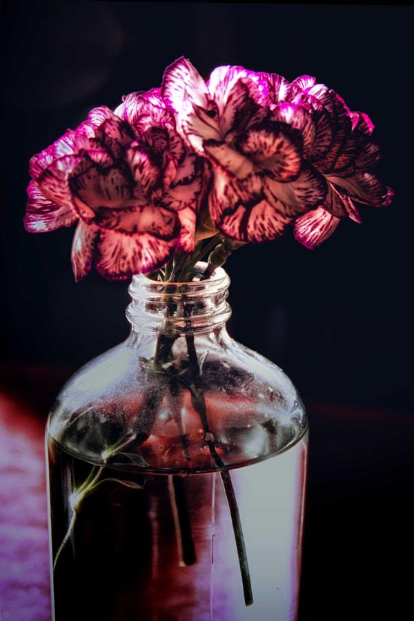 flower in bottle DSC