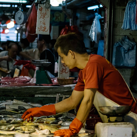 Hong Kong Fish Market, Sony ILCE-7R, Sigma ZOOM-alpha 35-135mm F3.5-4.5