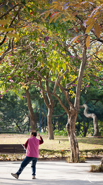 Photograph Kowloon Park by Roughley Originals on 500px