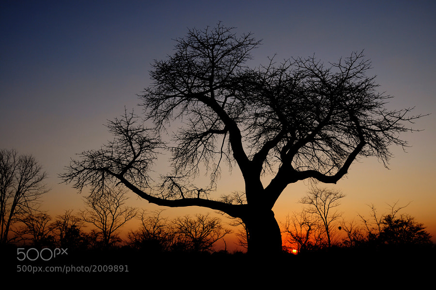 Sunset in southern Zambia