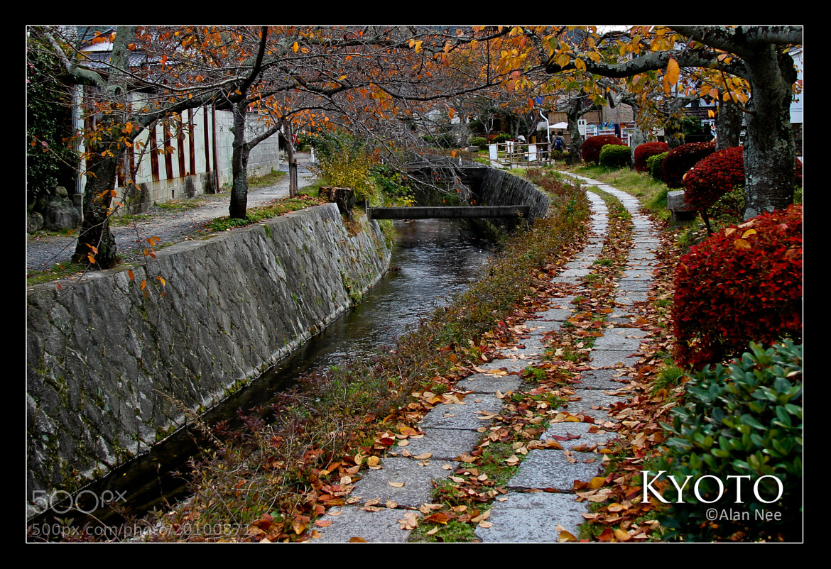 Photograph Kyoto by Alan Nee on 500px
