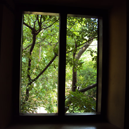 Window towards the World, Sony DSC-W180