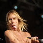 ������, ������: IGGY POP AND THE STOOGES