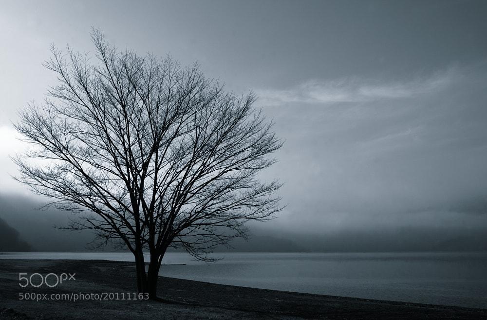 Photograph Cold Dawn by Shihya Kowatari on 500px