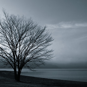 Cold Dawn by Shihya Kowatari (ShihyaKowatari)) on 500px.com