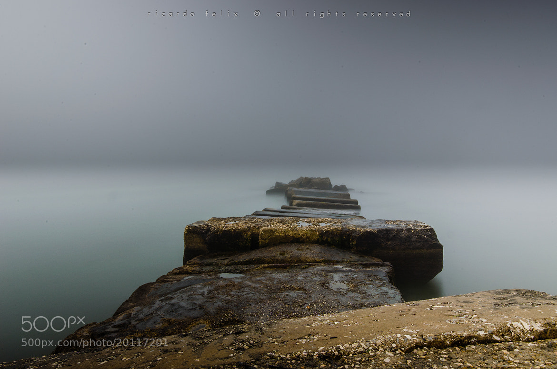 Photograph A foggy morning #1 by Ricardo Bahuto Felix on 500px