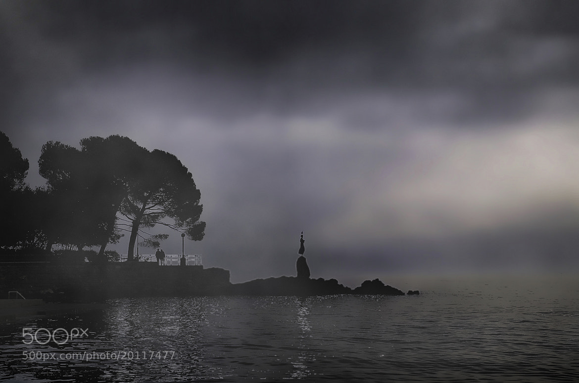 Photograph SOMEWHERE IN THE FOG by Mirna Vidić on 500px
