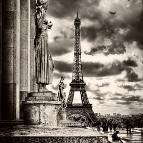 Paris by Viktor Korostynski (vikkor)) on 500px.com