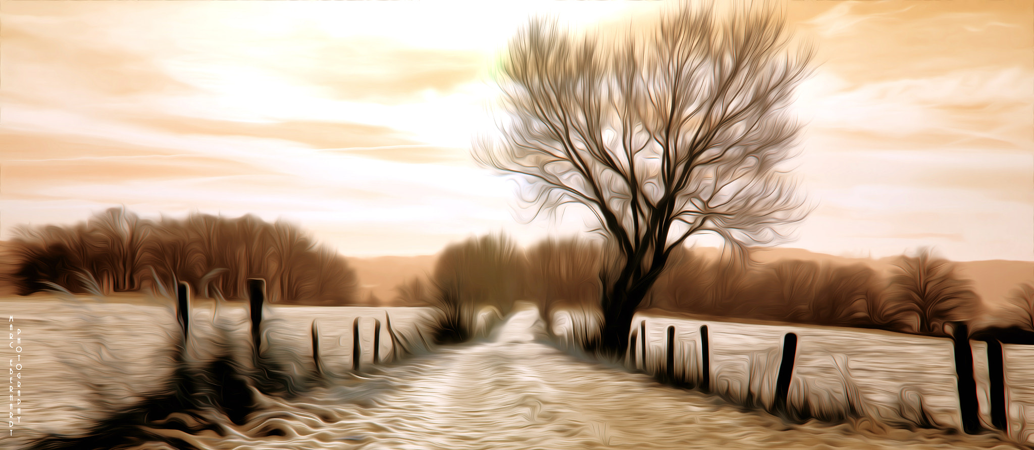 Photograph Winter path by Marc Eberhardt on 500px