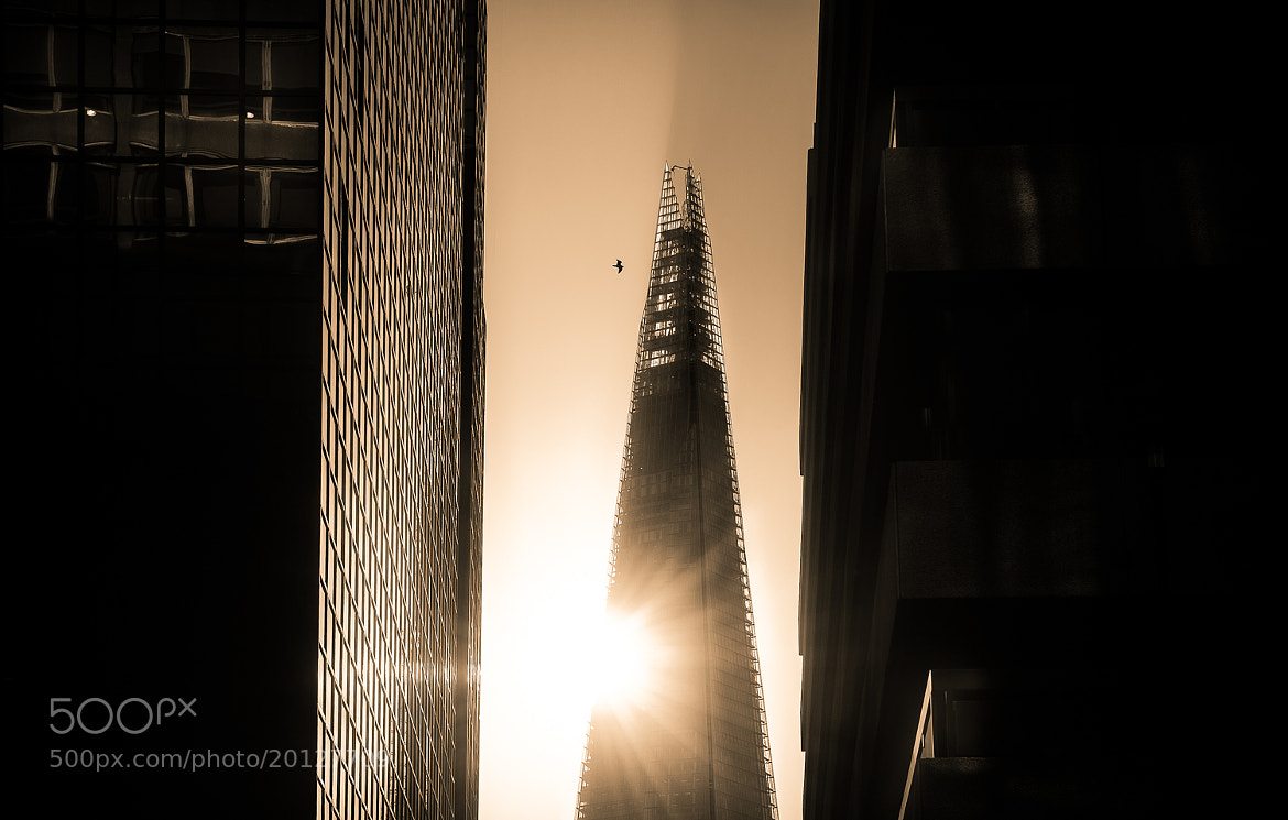 Photograph The Shard by pixeldreamer  on 500px