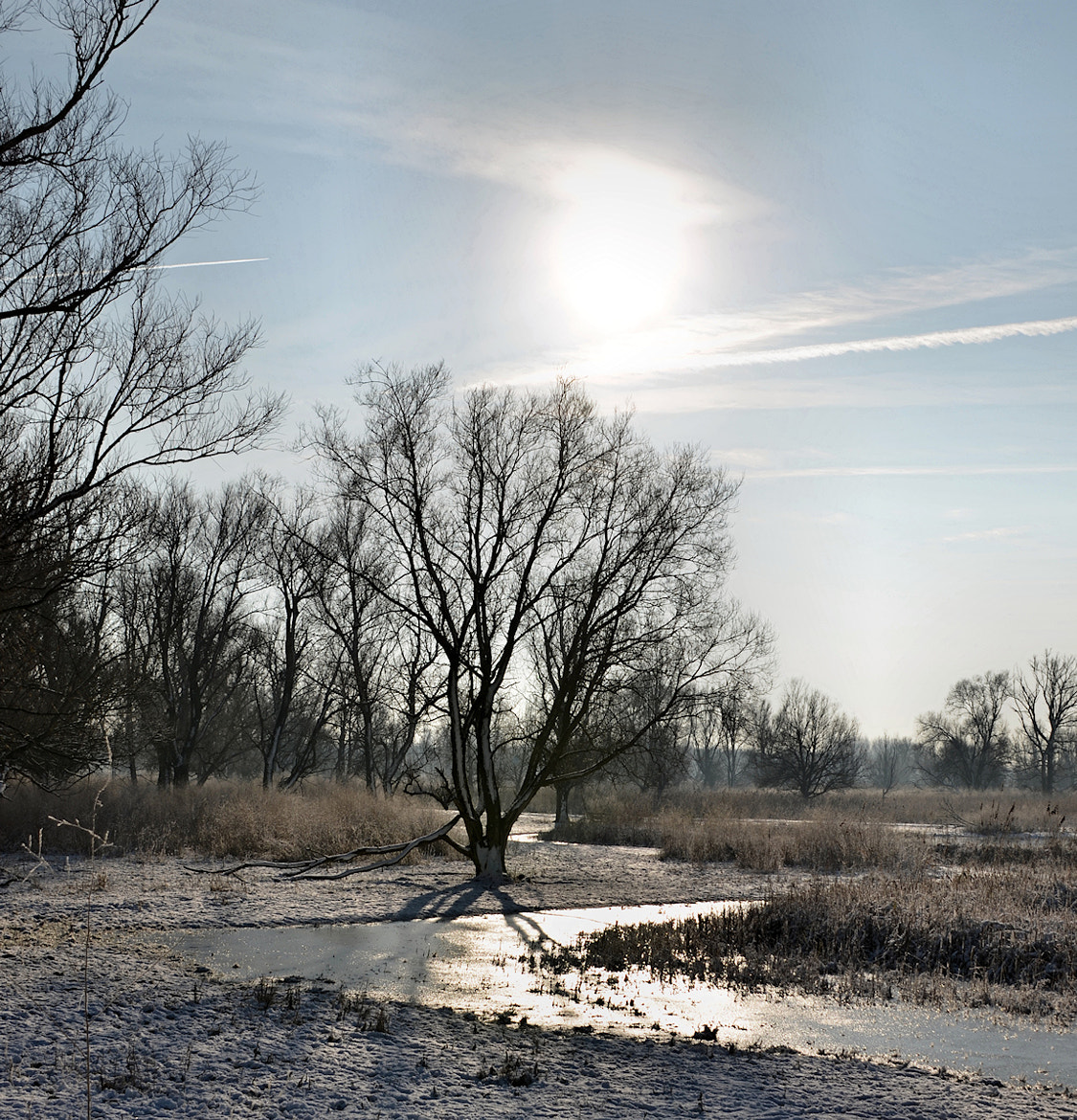 Photograph Oost III by Frank de Ridder on 500px