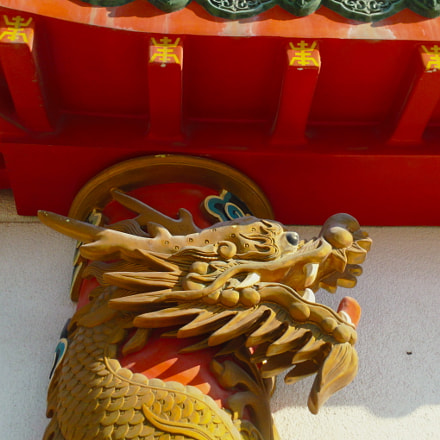 chinese dragon head, Samsung HMX-W300
