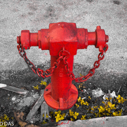 Fire hydrant, Nikon COOLPIX S6900