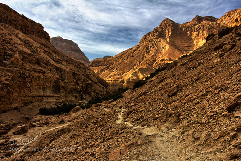 Photograph Desert by Yaniv Nissim on 500px