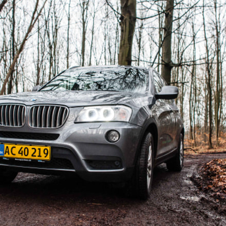 BMW X3 in it's, Nikon D90, Sigma 24mm F1.8 EX DG Aspherical Macro