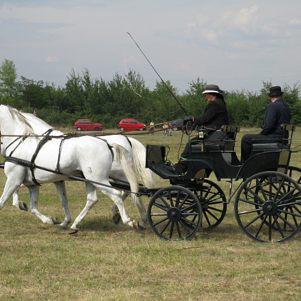 equestrian carriage 6, Canon POWERSHOT A2000 IS