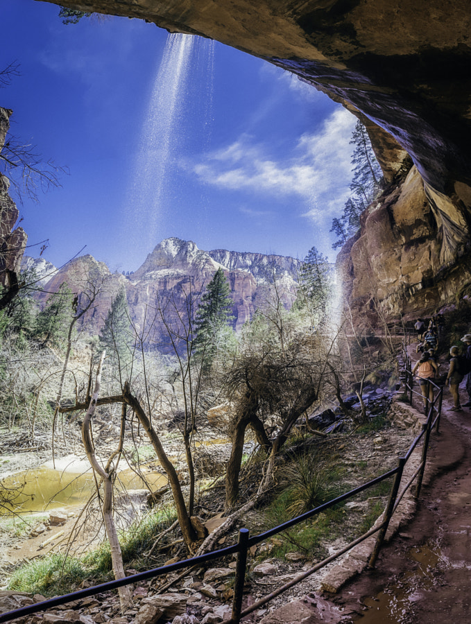 Zion National Park XI