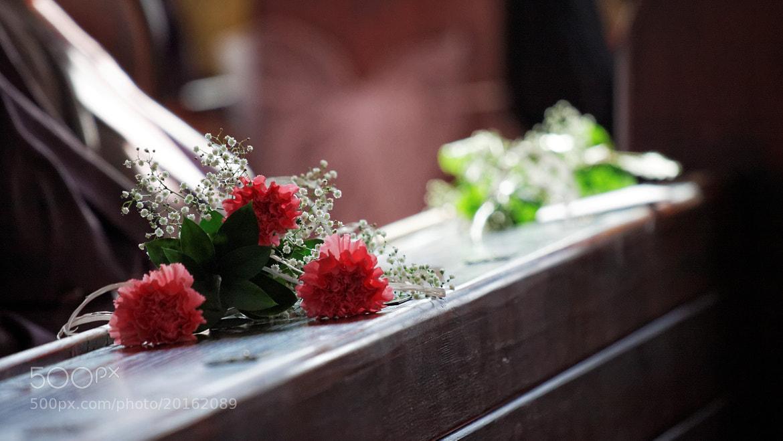 Photograph Flowers Waiting by Daniel Zaleski on 500px