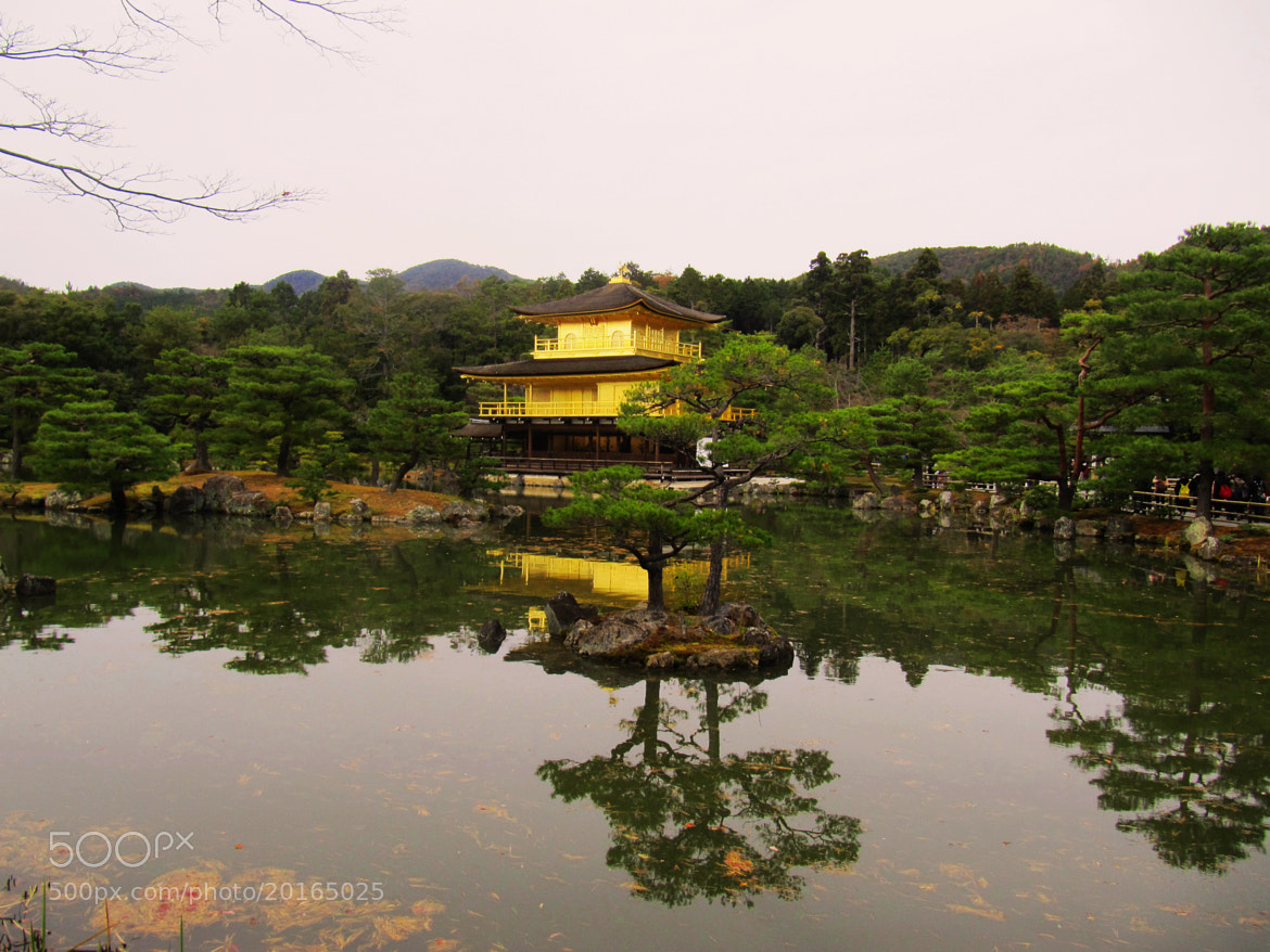 Photograph Kinkaku-ji by Katja Sen on 500px