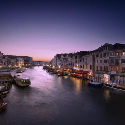 Purple suits Venice, don't you think?