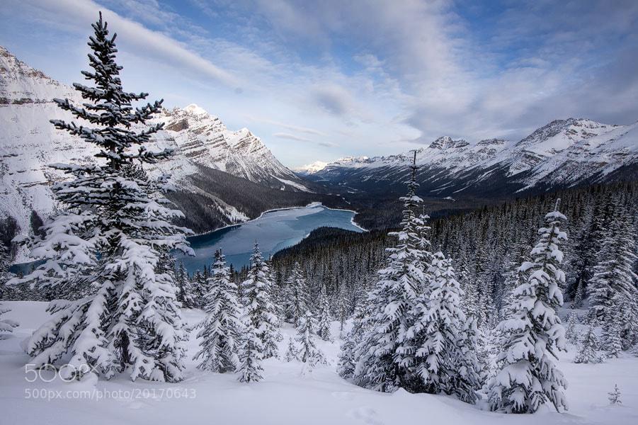 Photograph Peyto Winter by Jason Edlund on 500px