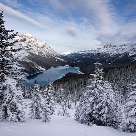 Peyto Winter by Jason Edlund (JasonEdlund)) on 500px.com