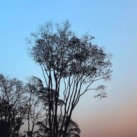 Nature Colour 2